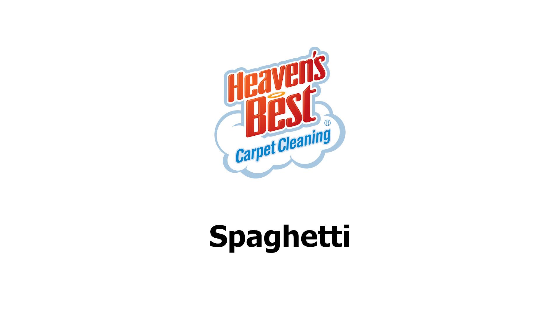 watch spaghetti promotional video
